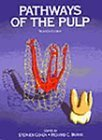 Pathways of the Pulp by Richard C. Burns (1998-01-15)
