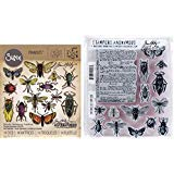 Tim Holtz Entomology - Stampers Anonymous Cling Stamps and Sizzix Framelits Die Set - Two Item Bundle by Tim Holtz (Image #1)