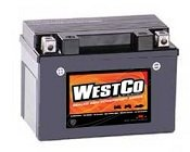 WestCo 12V9-B Maintenance-Free Rechargeable Sealed Lead-Acid Battery by MK Battery
