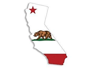 ca bear flag - 9
