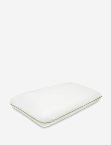Jelly Soft Memory Foam Traditional Pillow, Standard ()