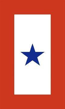 Military Service Star Flag Bumper Sticker Fallen Soldier Car Decal 4