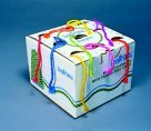 Trait-Tex 4-Ply Jumbo-Weight Yarn Cone Set - Assorted Neon Color44; Set - 9
