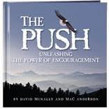 The Push, David McNally, Mac Anderson, 160810141X