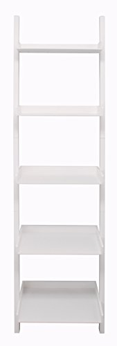 Kiera Grace Hadfield 5-Tier Leaning Wall Shelf - 18 by 67-Inch, White