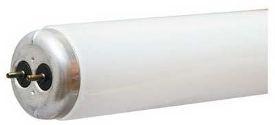 WP 48'' 40W CW Fluo Tube by GE Lighting
