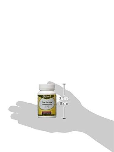 Amazon.com: vitacost Gas enzima alpha-galactosidase – -300 ...