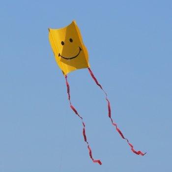 Einleiner-Drachen - Mini Sled SMILEY - für Kinder ab 3 Jahren - Abmessung: 32x40cm - inkl. 60m Drachenschnur und Streifenschwänze