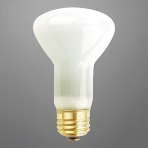 50 45 Watts Long Life Light Bulb R20 Flood 20 000 Hours 120 Volts Krypton Incandescent