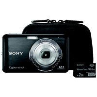 Sony Cyber-shot DSC-W310BDL/B Digital Camera, Color Black with Sony Case and 2GB Memory Stick Sony Dsc Cd