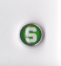 Michigan State Floating Charm