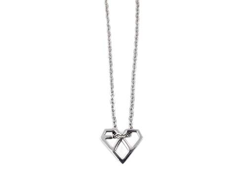 Fanstown Kpop EXO Necklace Titanium Mini Size Official Same Style Merchandise Accessories Send with Lomo Card and Gift Box (Baekhyun Necklace)