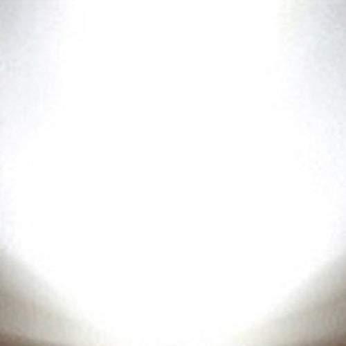 Led Festoon Lighting 240V in US - 4