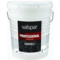 5 Gallon Medium Base Interior Professional Series Paint Eggshell