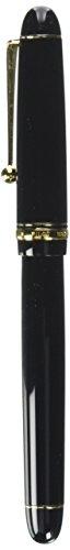 Pilot Fountain Pen Custom 74, F-Nib, Black Body (FKK-1000R-B(-F)) by Pilot (Image #2)