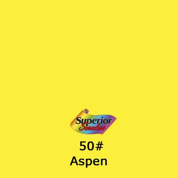 Superior Seamless Photography Background Paper, Photo Backdrop Paper 53 Wide x 16 #50 Aspen (101350C)
