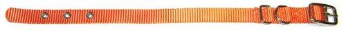 Hamilton 5/8-Inch by 18-Inch Single Thick Nylon Deluxe Dog Collar, Mango Orange