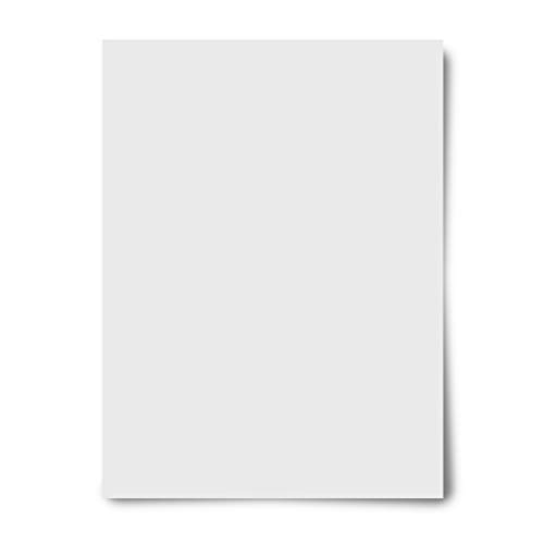 Royal Brites Poster Board White, 22 x 28 Inches, 50-Sheet Case - Poster Recycled Board