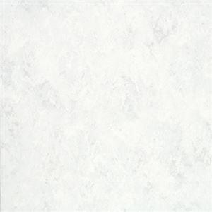 東リ ビニル床タイル フェイソールプルス サイズ 45cm×45cm 色 FPT2008 14枚セット【日本製】 B07PJNXZ1M