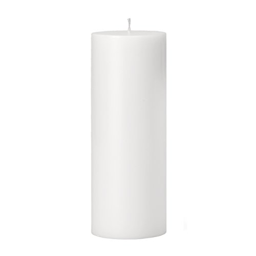 Torre & Tagus 901758C Prime Palm Wax Pillar Candle 3 by 8-Inch, (White Palm Wax Pillar)