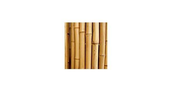 Cañas de bambú para sujetar hortalizas y otros usos, 25 unidades ...