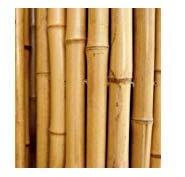 Cañas de bambú para sujetar hortalizas