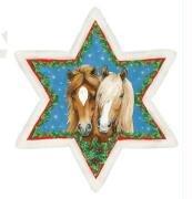 Pferde-Weihnachtsstern