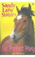 book cover of The Perfect Pony