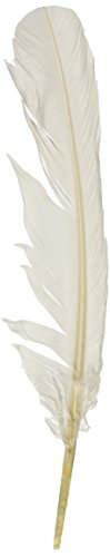 Turkey Quill Feathers 4 Pkg White