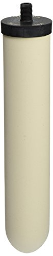 Doulton W9121750 10-Inch Super Sterasyl Ceramic Filter Candle