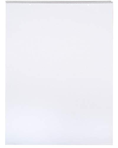 School Smart - 85325 Chart Tablet, 24 x 32