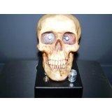 Skull XLPC Photo Theremin -