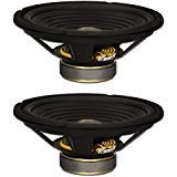 Goldwood Sound, Inc. Stage Subwoofer OEM 10 Woofers 220 Watts each 8ohm Replacement 2 Speaker Set GW-210/8-2