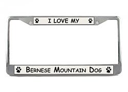 Bernese Mountain Dog License Plate Frame (Chrome) 5 Year Warranty