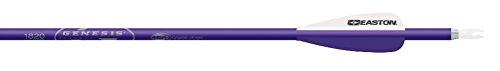 Easton Genesis V2 Arrows with 3