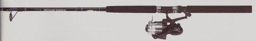 Hunter Roddy (Master Fishing Tackle Roddy Hunter Blank Series Rod for S/W-S (2 Piece), Black, 10')