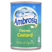 Price comparison product image Ambrosia Devon Custard,  14.1-Ounce Can (Pack of 4)