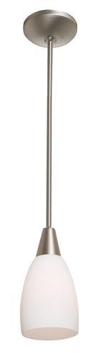 Access Lighting 28469-ORB/OPL Shaney Velvet Cone Glass Mini