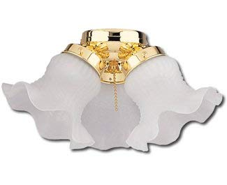 Craftmade ECK11BB Ceiling Fan Light Kit, 3-Light 180 Watt, Bright Brass