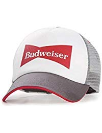 56497f81a0b85 Bud Light Snap Back Hat - Blue and White at Amazon Men s Clothing store