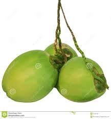 Fresh Green Water Coconuts (Set of 3)