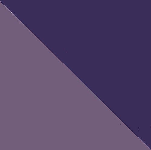 Moleskine Volant Notebook (Set of 2), Large, Ruled, Light Violet, Brilliant Violet, Soft Cover (5 x 8.25) by Moleskine (Image #1)