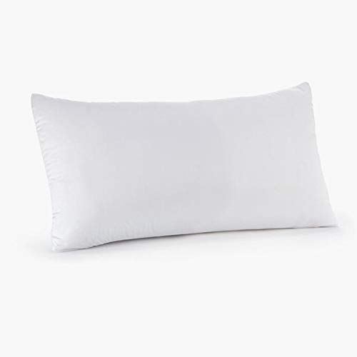 Claritin Ultimate Allergen Barrier Pillow Protector Cover - Defend Against Dust Mites, Pollen, Pet Dander and Other Household Allergens, Luxuriously Soft (Child Size, White) ()