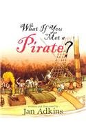 What If You Met A Pirate? by Brand: Roaring Brook Press