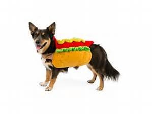 Top Paw Pet Halloween Hot Dog Rider Dog Costume Size Small / Medium