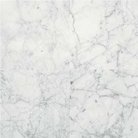 Natural Stone Collection Carrara Gioia 12 in. x 12 in. Polished Marble Floor and Wall Tile (10 sq. ft. / case) - Daltile Natural Stone