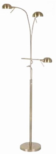 PS 2-Lite Floor Lamp with Reading Lamp, Polished Steel (Transitional Twenty Light Chandelier)