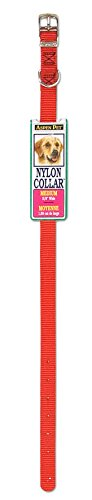Petmate Aspen PET Products 15356 Nylon Dog Collar, 5/8 by 12-Inch, Red (Aspen Petmate Leash)