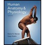 Download Human Anatomy & Physiology (8th, 10) by Marieb, Elaine N - Hoehn, Katja N [Paperback (2009)] ebook