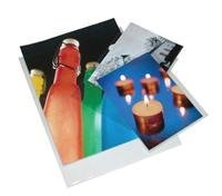 Print File Photo Pages Holds Ten 3-1/2x5'' Prints, Pack of 500 by Print File